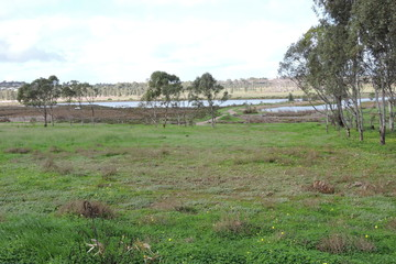 Recently Sold Lot 1 Bottle Brush Court, MURRAY BRIDGE, 5253, South Australia