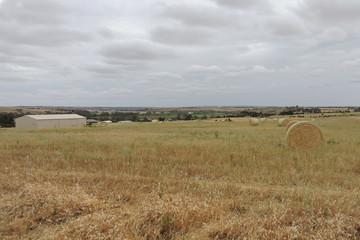 Recently Sold Sec1094 Cromwell Road, MYPOLONGA, 5254, South Australia