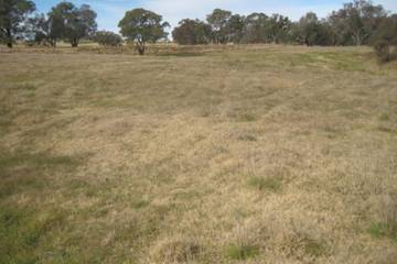 Recently Sold 126 Chillingworks  Road, YOUNG, 2594, New South Wales