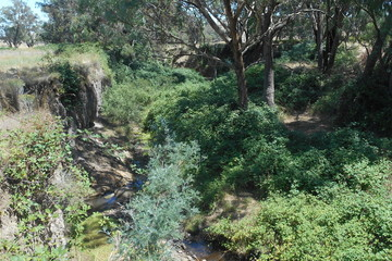 Recently Sold Lot 69 via Taylors Flat Road, TAYLORS FLAT, 2586, New South Wales
