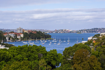 Recently Sold 818/22 Doris Street, NORTH SYDNEY, 2060, New South Wales