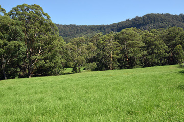 Recently Sold Lot 3 Marden Lane, KANGAROO VALLEY, 2577, New South Wales