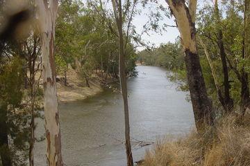 Recently Sold 3620 Tarwoona Road Texas, GOONDIWINDI, 4390, Queensland