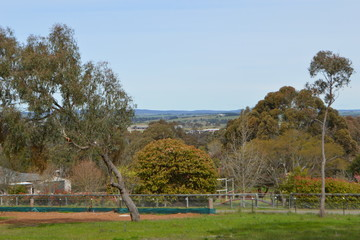 Recently Sold Lot 8 ''Jomagi Estate'', Slocombe Street, GOULBURN, 2580, New South Wales