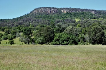 Recently Sold BOONAH