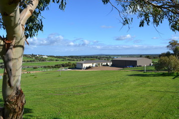 Recently Sold Lot 62 Sea Eagle Court, BOSTON, 5607, South Australia