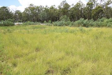Recently Sold Lot 23 Safflower Street, MEMERAMBI, 4610, Queensland
