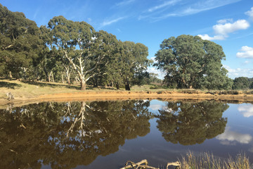 Recently Sold Section 1449 Archer Hill Road, BUGLE RANGES, 5251, South Australia