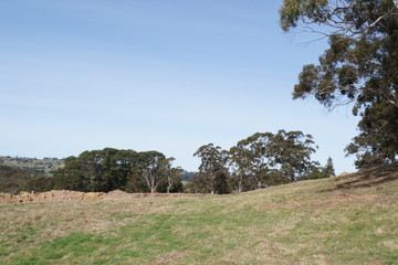 Recently Sold Lot 6 Horderns Road, BOWRAL, 2576, New South Wales