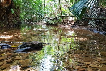 Recently Sold Lot 19 Thornton Pk Drive Forest Creek, DAINTREE, 4873, Queensland