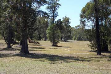 Recently Sold LOT 8 ADVANCE RD, SUSSEX INLET, 2540, New South Wales