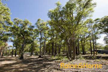 Recently Sold 58 Myrtle Ridge, ARGYLE, 6239, Western Australia