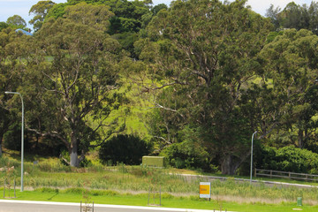 Recently Sold 8 (Lot 323) Kennedy Crescent, MILTON, 2538, New South Wales