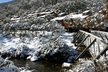 Recently Sold 18 Riverside Cabin, Diggings Terrace, THREDBO VILLAGE, 2625, New South Wales