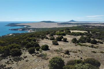 Recently Sold Lot 3, 45 Frenchman Road, Frenchman via, COFFIN BAY, 5607, South Australia