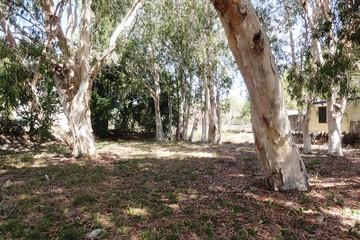 Recently Sold 2 Pioneer Drive, DINGO BEACH, 4800, Queensland