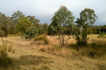 Recently Sold Lot 337 and 350 waratah street, YERRINBOOL, 2575, New South Wales