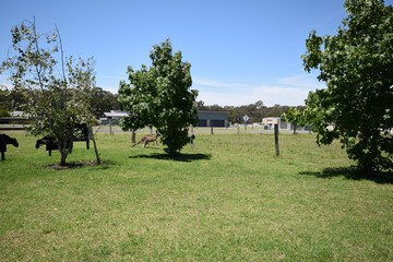 Recently Sold 6 Daisy Place, WORRIGEE, 2540, New South Wales
