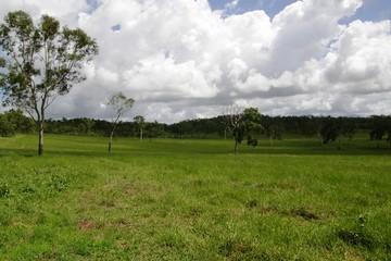 Recently Sold 211 Thorogood Road, KELSEY CREEK, 4800, Queensland