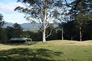 Recently Sold Lot 5 Cedar Springs Road, KANGAROO VALLEY, 2577, New South Wales