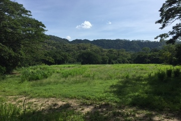 Recently Sold Lot 38 Connolly Road, MOWBRAY, 4877, Queensland