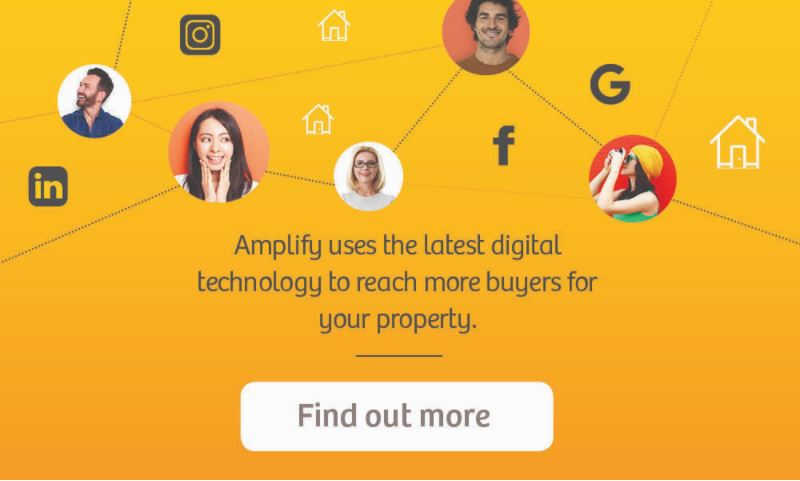 Amplify Find Out More