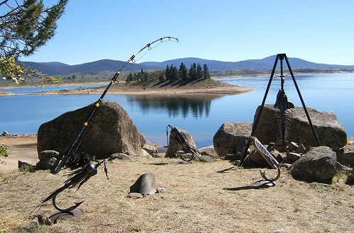 jindabyne Fishing