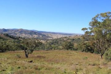 Recently Sold Lot 1A Pembroke Road, Merriwa, 2329, New South Wales
