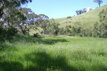 Recently Sold Sec 3342 Goolwa Road, Ashbourne, 5157, South Australia