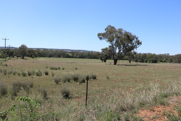 Recently Listed Lots 220 and 221 Nash Street, PARKES, 2870, New South Wales