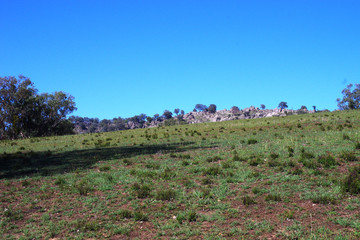 Recently Sold 3241 Frogmore Road, COWRA, 2794, New South Wales