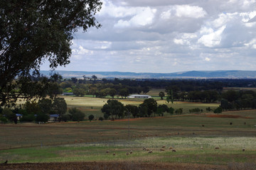 Recently Sold Lot 104 Porters Mount Road, COWRA, 2794, New South Wales