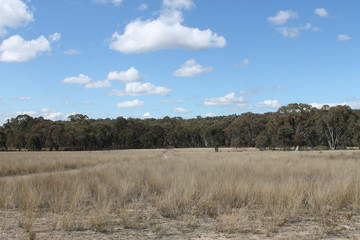Recently Sold 1781 Blue Springs Road, GULGONG, 2852, New South Wales