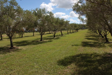 Recently Listed 733 Lowood-Minden Road, Minden, 4311, Queensland