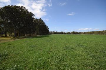 Recently Sold Lot 11 DP 1222172 Bournes Lane, PYREE, 2540, New South Wales