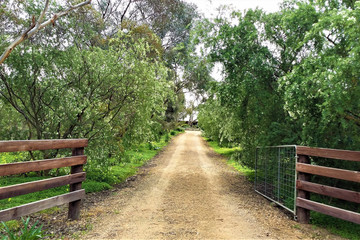 Recently Sold 5 (Lot 45) Helen Court, STRATHALBYN, 5255, South Australia