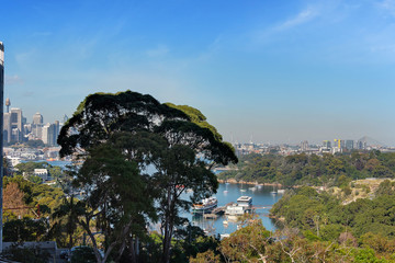 Recently Sold 13/16 Carr Street, Waverton, 2060, New South Wales