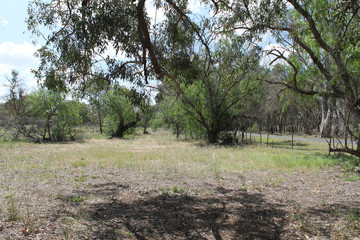 Recently Listed Gulgong