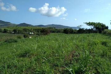 Recently Listed Tavua
