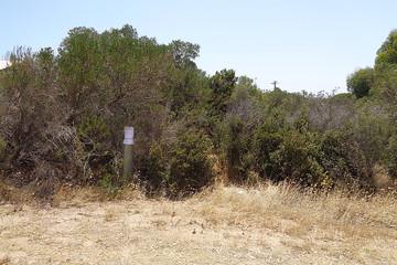 Recently Sold 9 Sandpiper Drive, Thompson Beach, 5501, South Australia