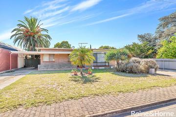 Recently Sold 3 Doran Street, Paradise, 5075, South Australia