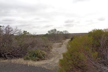 Recently Sold 7 Skua Court, Thompson Beach, 5501, South Australia