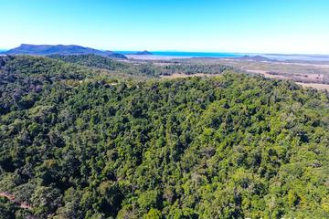 Recently Sold 84 Dunwoody Road, Ball Bay, 4741, Queensland