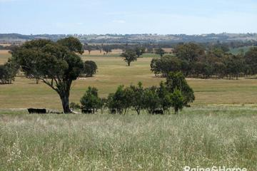 Recently Sold 125 Grounds Road, Murringo, 2586, New South Wales
