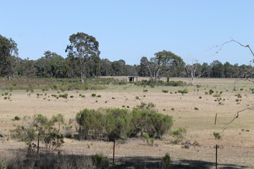 Recently Sold 1803 Blue Springs Road, Gulgong, 2852, New South Wales
