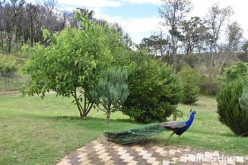 Recently Sold 66 Sara River Road, Glen Innes, 2370, New South Wales
