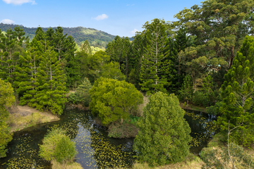 Recently Sold 11A Alternative Way, Nimbin, 2480, New South Wales