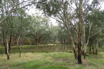 Recently Listed Part 4735 Olympic Highway, Young, 2594, New South Wales