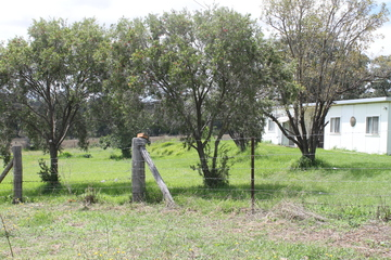 Recently Sold 112 Norris Lane, Gulgong, 2852, New South Wales